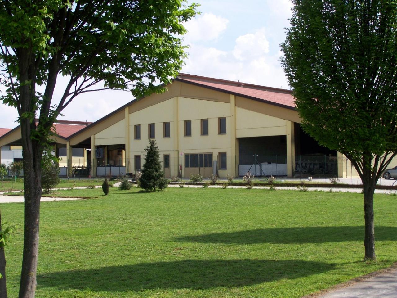 Arioli Casirate 5